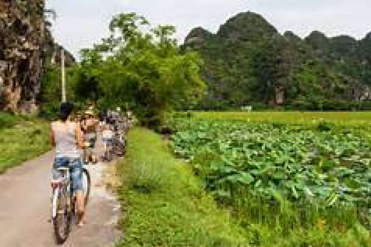 OCEAN TOURS TAM COC FARM TRIP 1DAY 1NIGHT