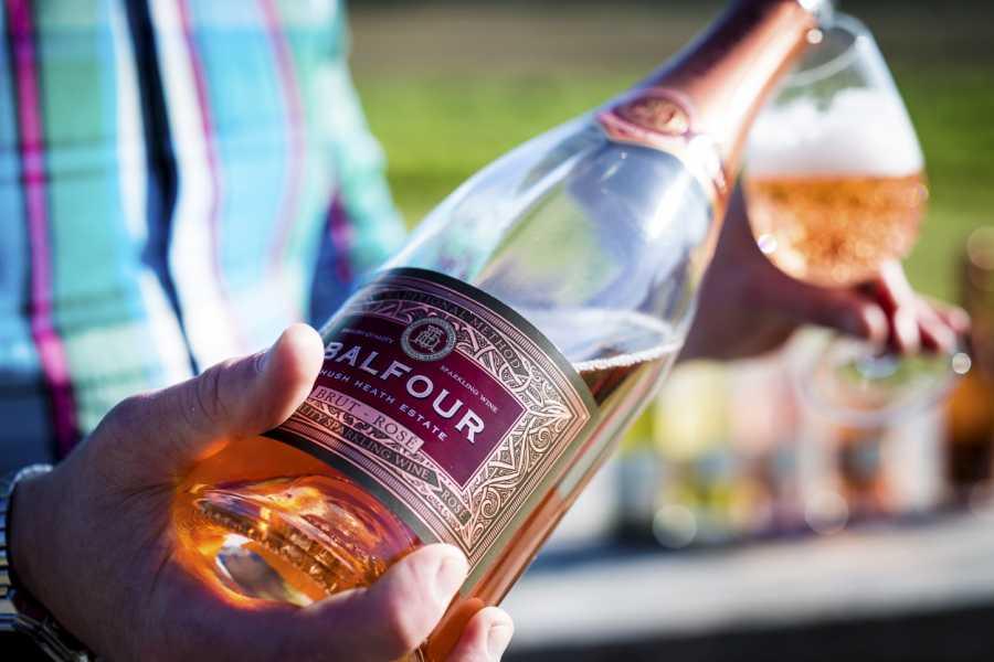 Hush Heath Estate Winter Winery Tours & Tasting