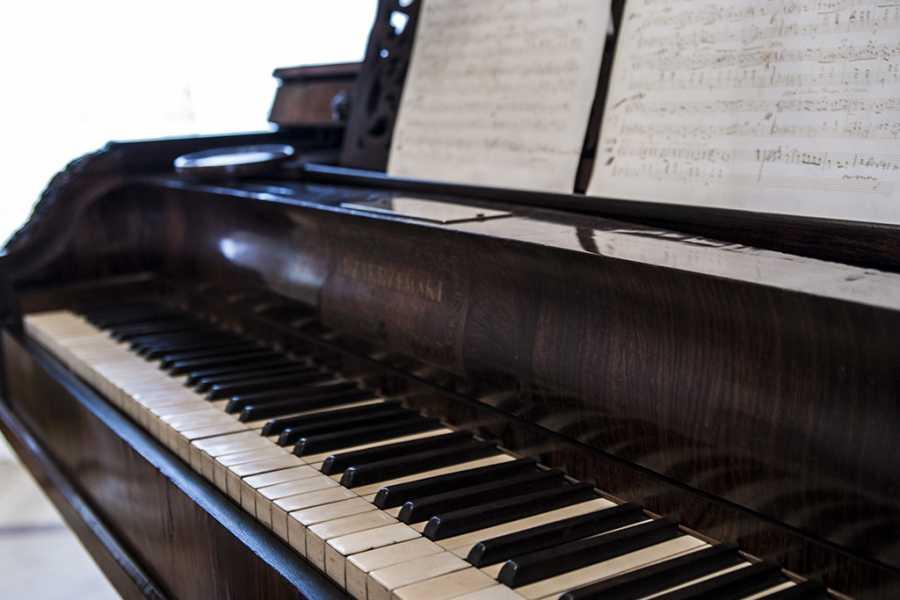One Day Tour PAŁAC W SANNIKACH – Tropem Chopina