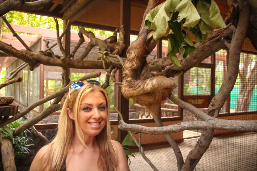 Tour Guanacaste Diamante Animal Sanctuary Pass
