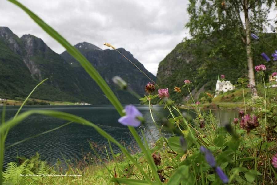 FRAM Rundtur til UNESCO Geirangerfjord, Norangsdalen & Hjørundfjord