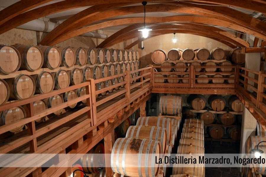 Enjoy33 Wine Tour Vallagarina