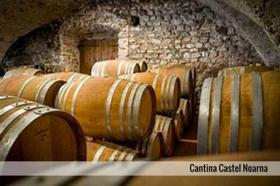 Enjoy33 Vallagarina Wine Tour