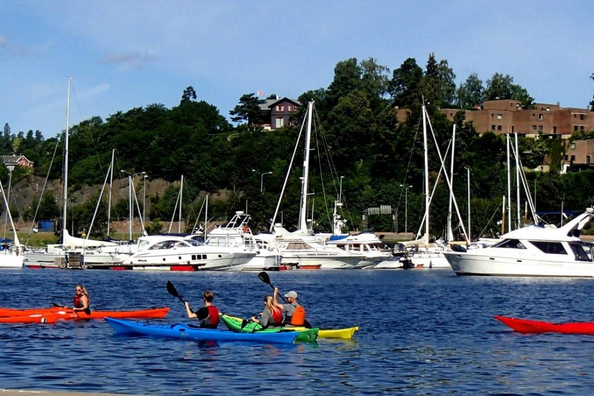 viking biking 3 Hour Kayaking Tour