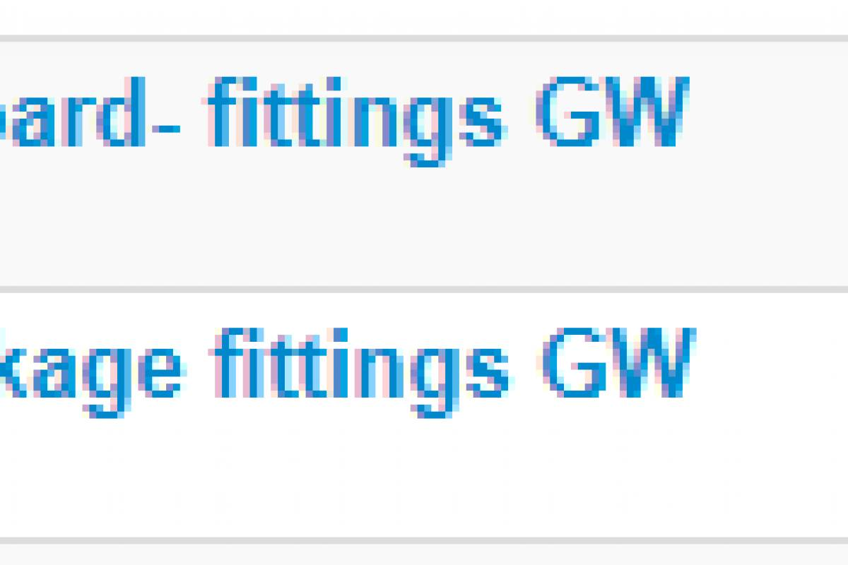 Grindelwaldsports Afternoon Beginners Ski Package- fittings GwS