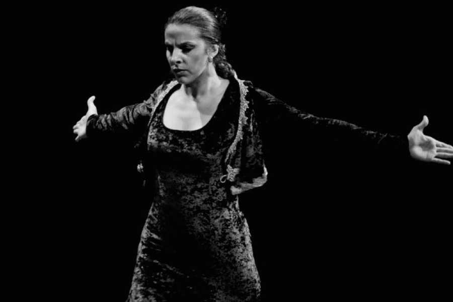 NHUE Espectáculo de flamenco en Granada
