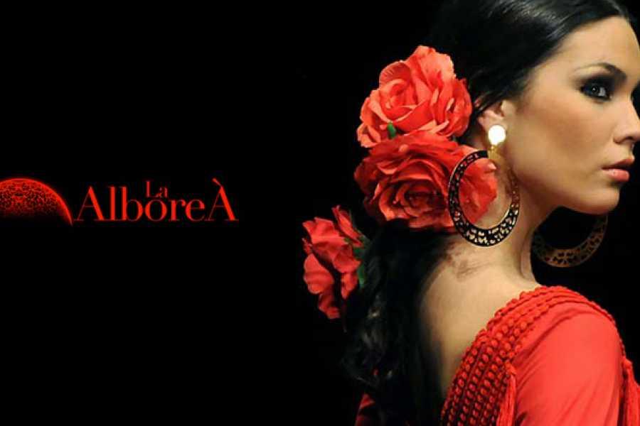 NHUE Spectacle de flamenco à Grenade.