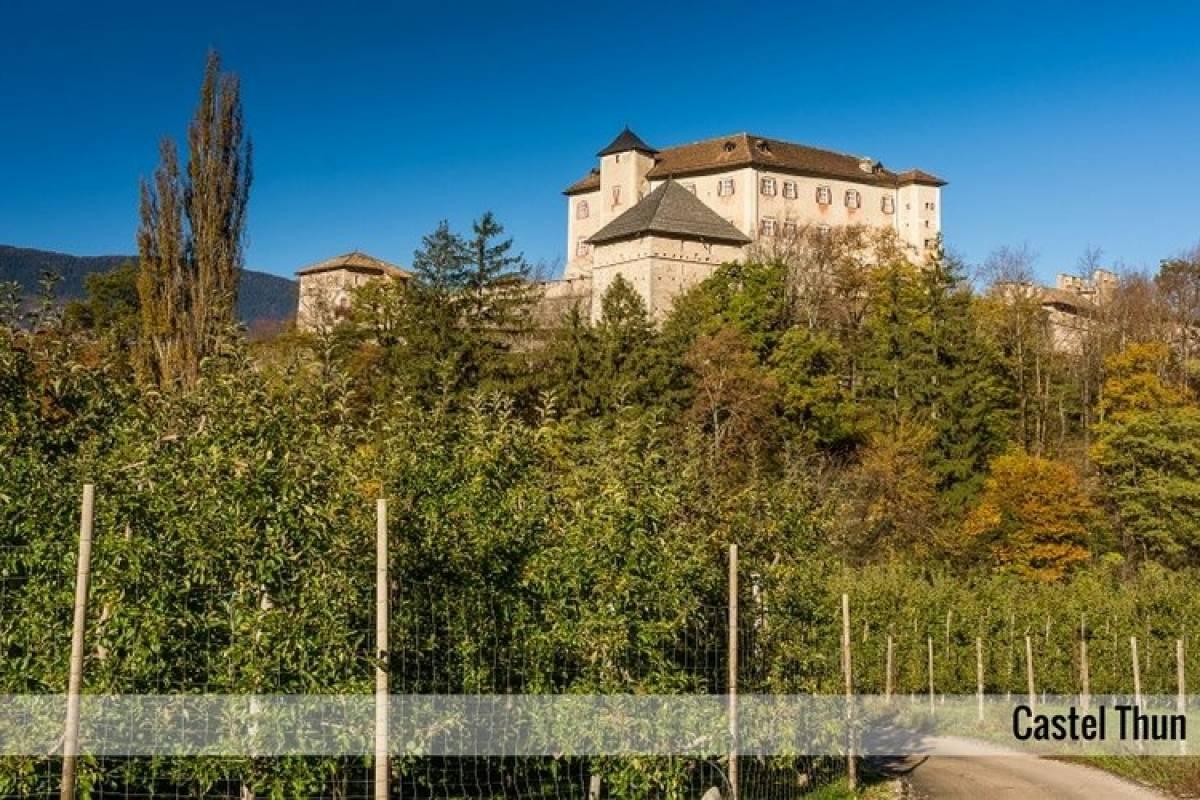 Enjoy33 In Trenino tra Castelli e Musei   | 1 giorno