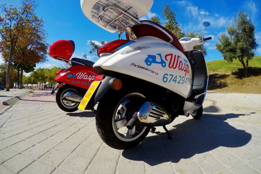 Urban Safari Tours Vespa: Tour + Guide + Tapas / Picnic