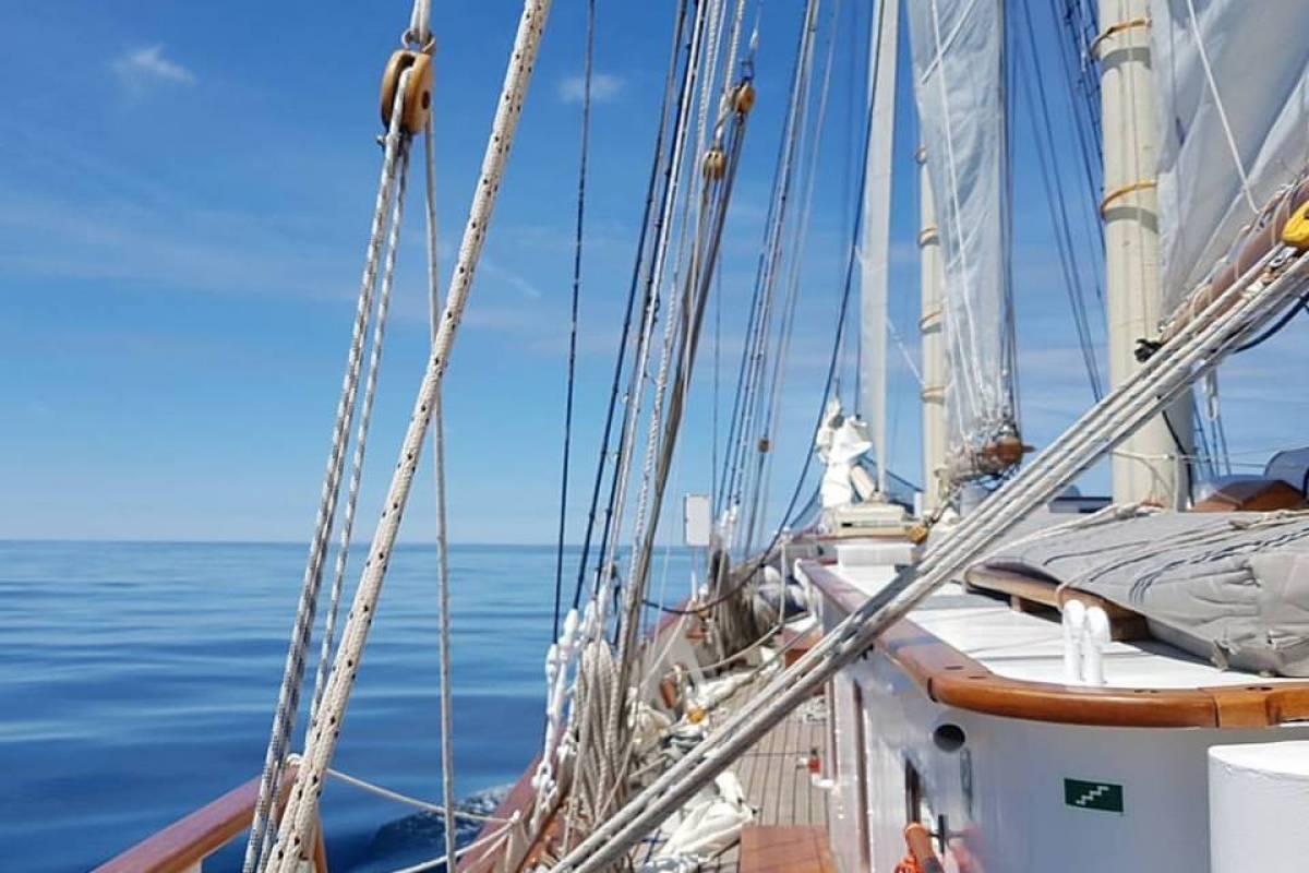 Maybe Sailing The Windward Islands