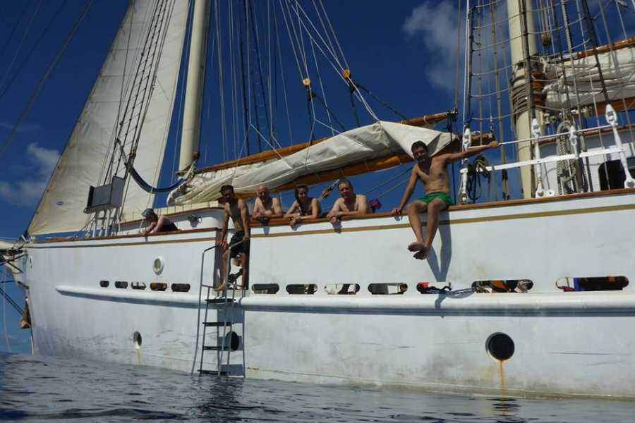 Maybe Sailing No January Blues in the Caribbean