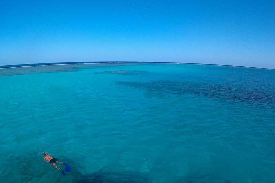 Marsa alam tours Über Nacht Schnorchelausflug am Satayh Dolphin Reef von Marsa alam