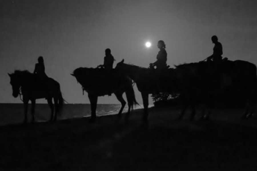 I-land Aruba Tours Western Moonlight Ride