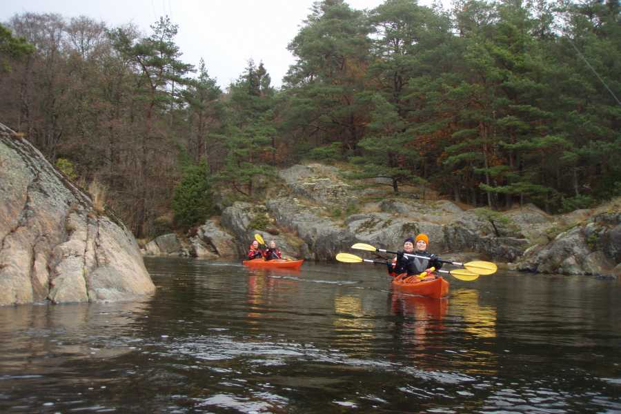 Outdoor West Sea kayak tour: AS YOU LIKE IT (PRIVATE TOUR)