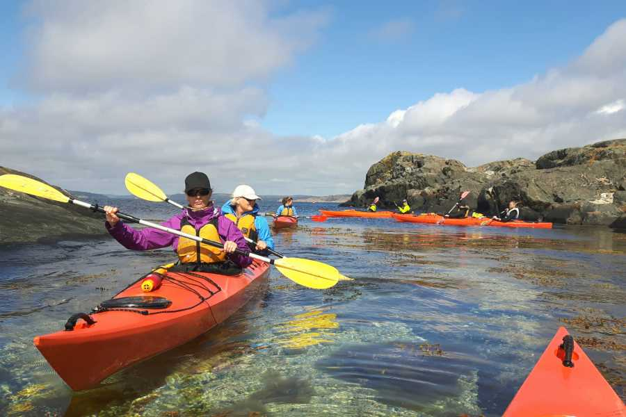 Outdoor West Sea kayak tour: HERRING HERITAGE