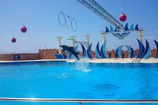 // Dolphinarium from Side