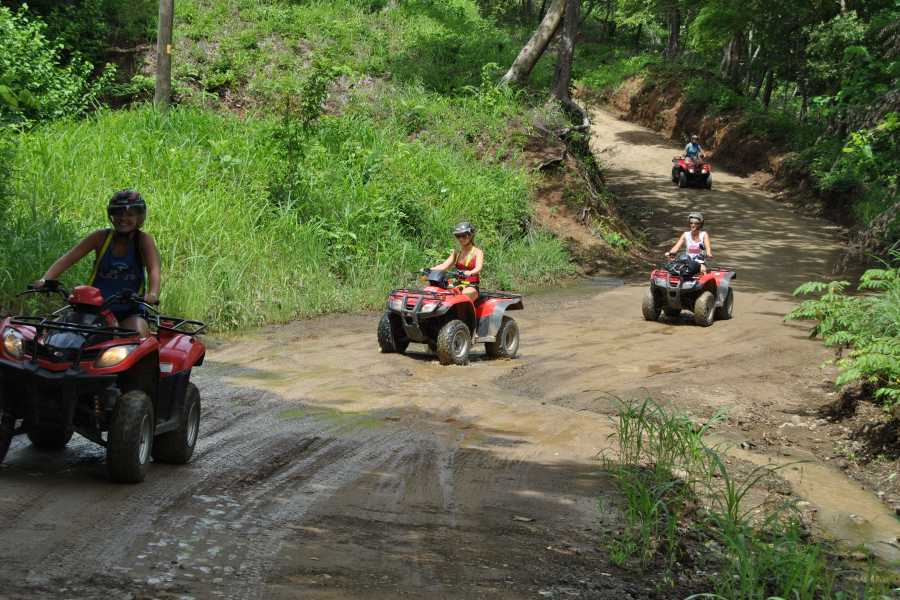CongoCanopy.com ATV Canopy Monkey Combo