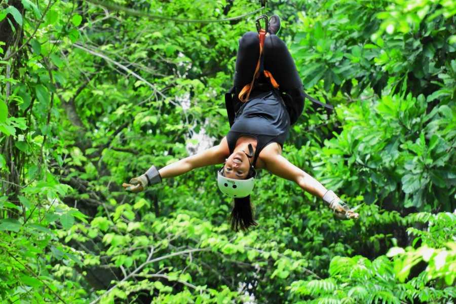 CongoCanopy.com Canopy Monkey Sanctuary Combo