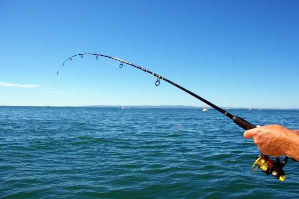 // Sea Fishing Alanya