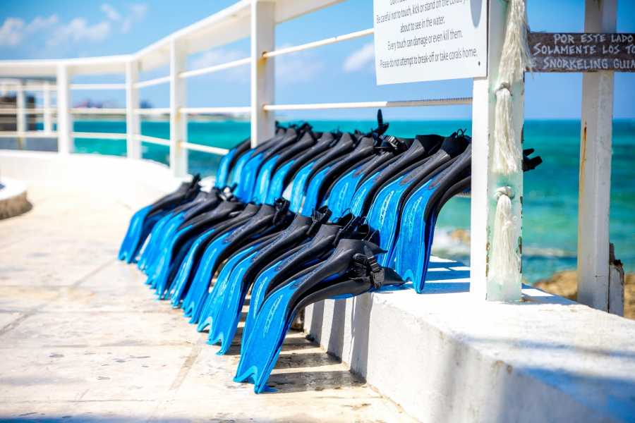 Pearl Island Bahamas Beach Escape incl. Lunch & Snorkel Adventure