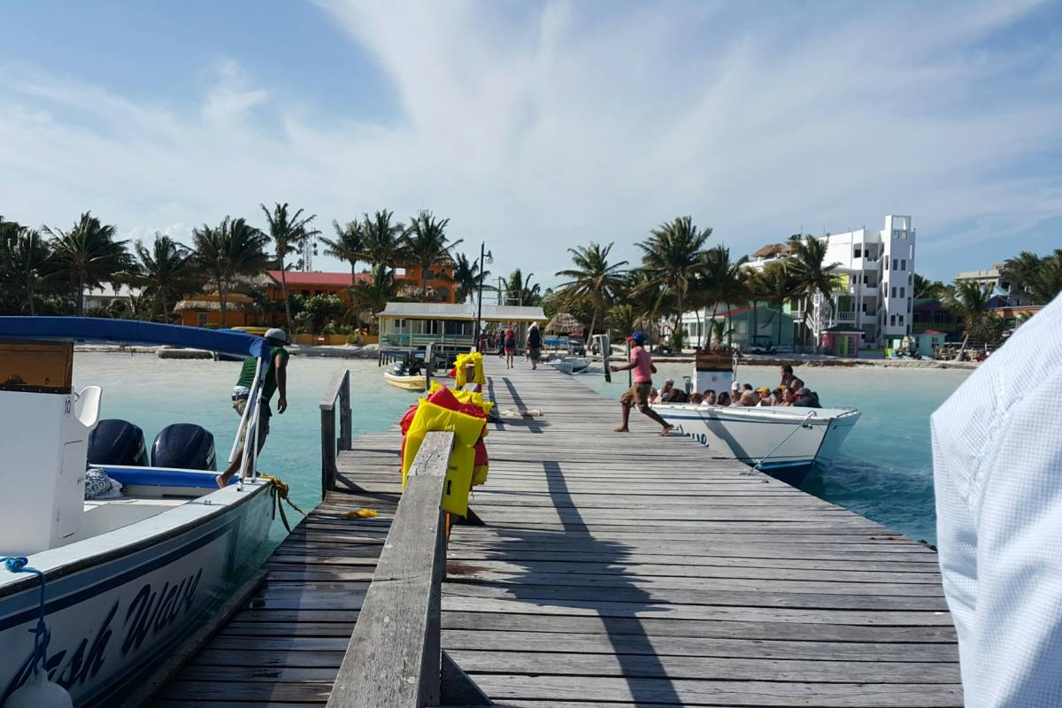 Ocean Ferry Belize Caye Caulker to San Pedro - Round Trip