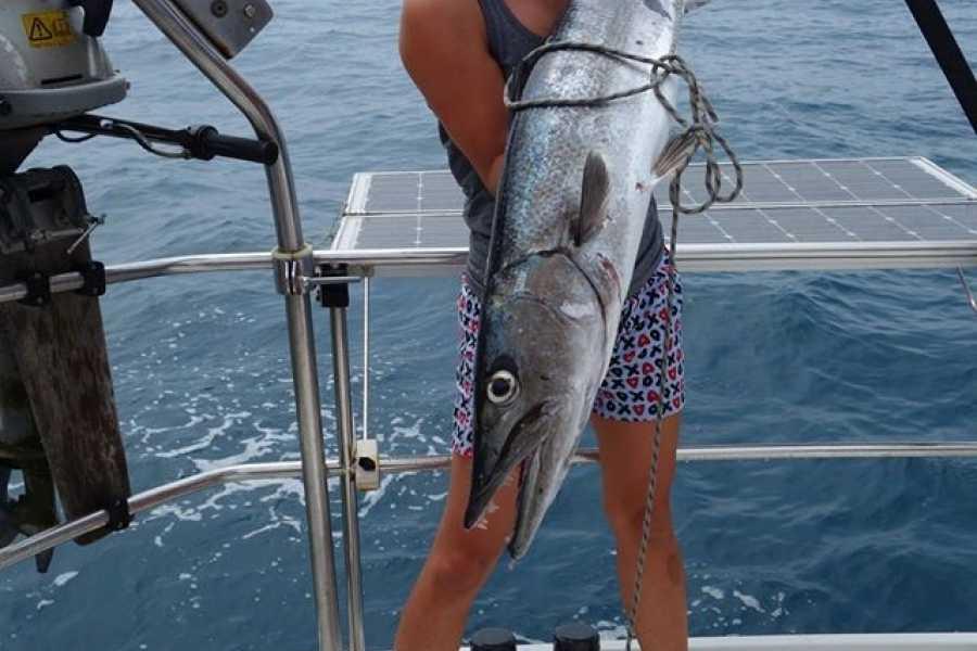 Cacique Cruiser BOAT TO PANAMA - Mintaka sailboat