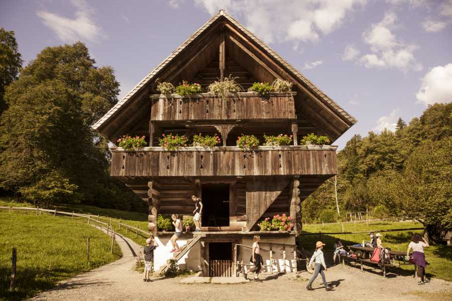 Interlaken Walking Tours Private Ballenberg Tour