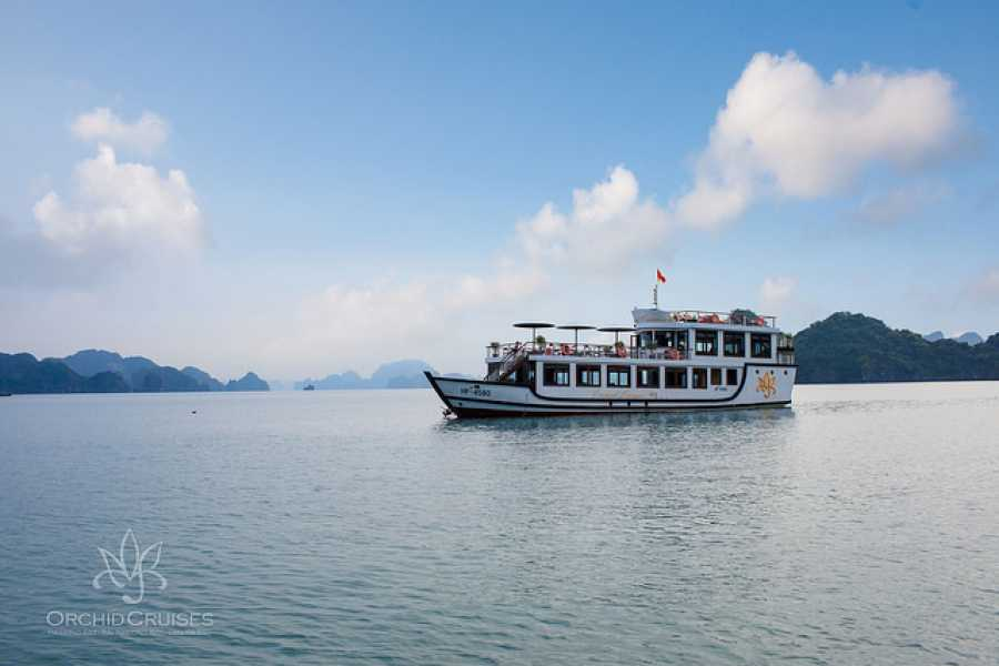 Friends Travel Vietnam Ha Long  Orchid Cruise Luxury Day Tour