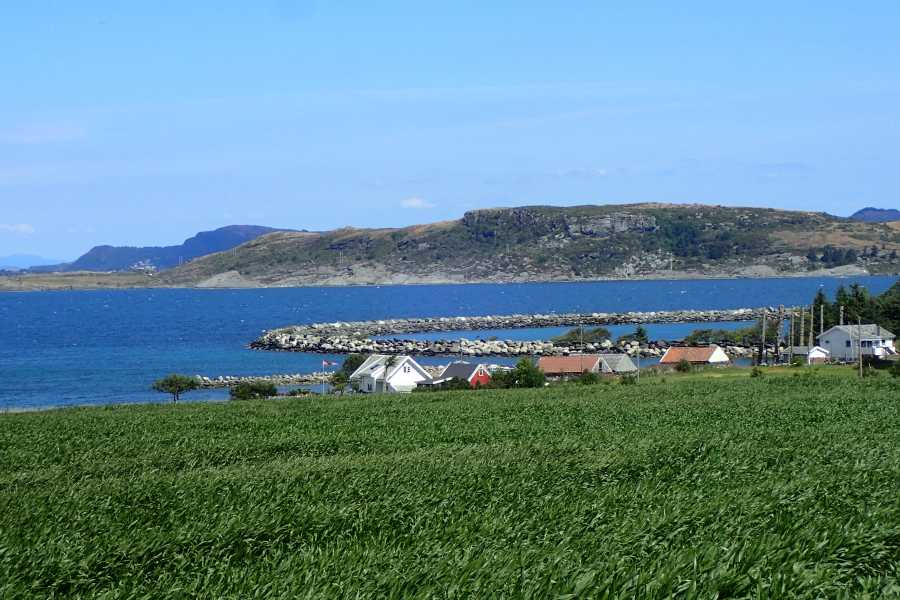 Rogaland Aktiv as Among elephants and lighthouse