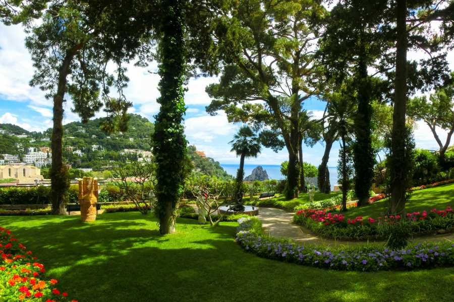 Travel etc Discover Capri from Positano