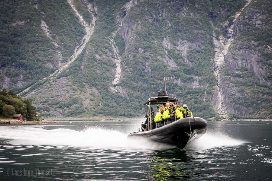 Hardanger Fjordsafari AS RIB Tour for 30 min