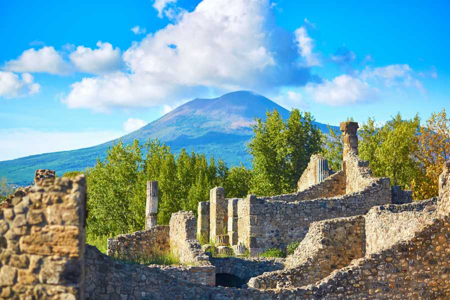 Travel etc Pompeii & Vesuvius + Naples Experience