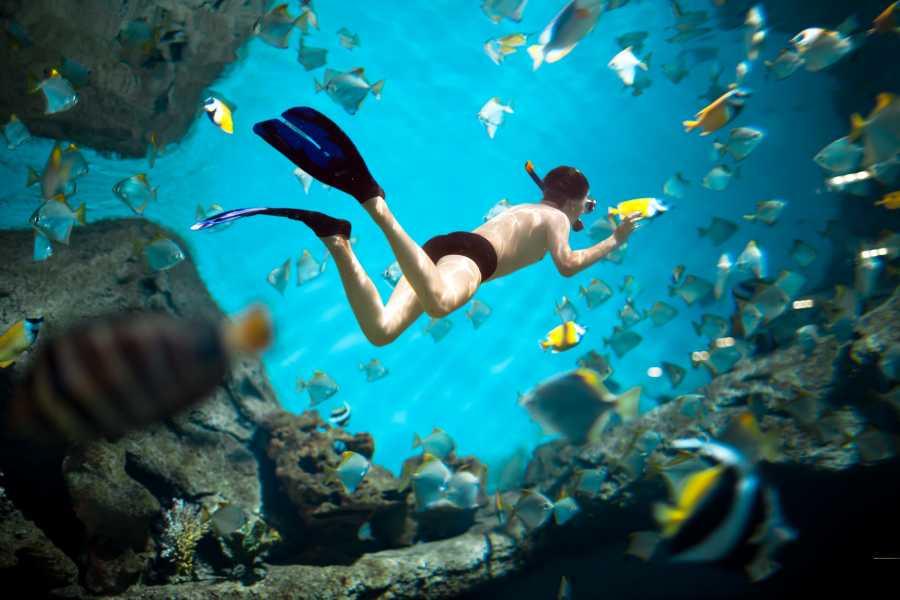 Tour Guanacaste On-Line ATV Gold Coast Snorkel Tour