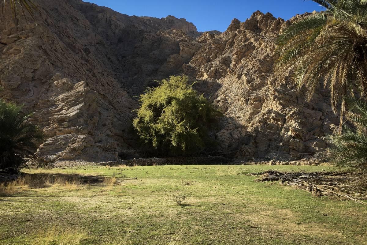 Adventurati Outdoors Partridge Hidden Oasis - UAE
