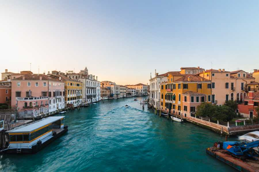 Venice Tours srl Grand Canal tour: self-guided tour!
