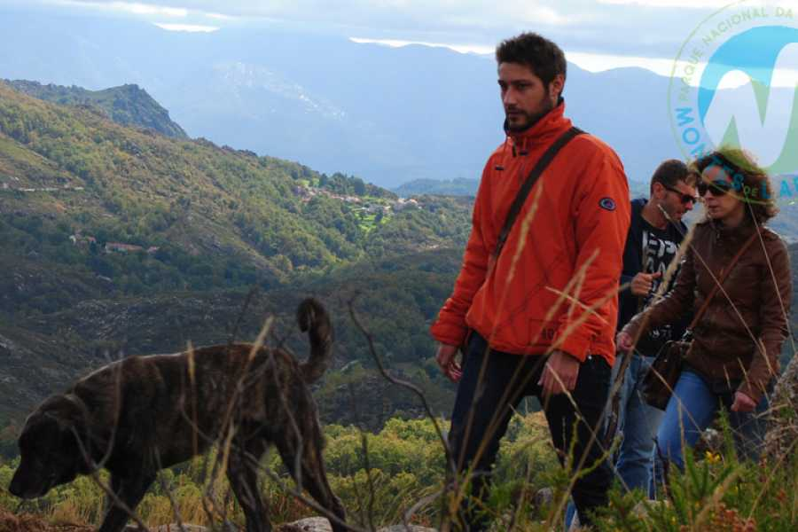Gerês Holidays Walk with a shepard