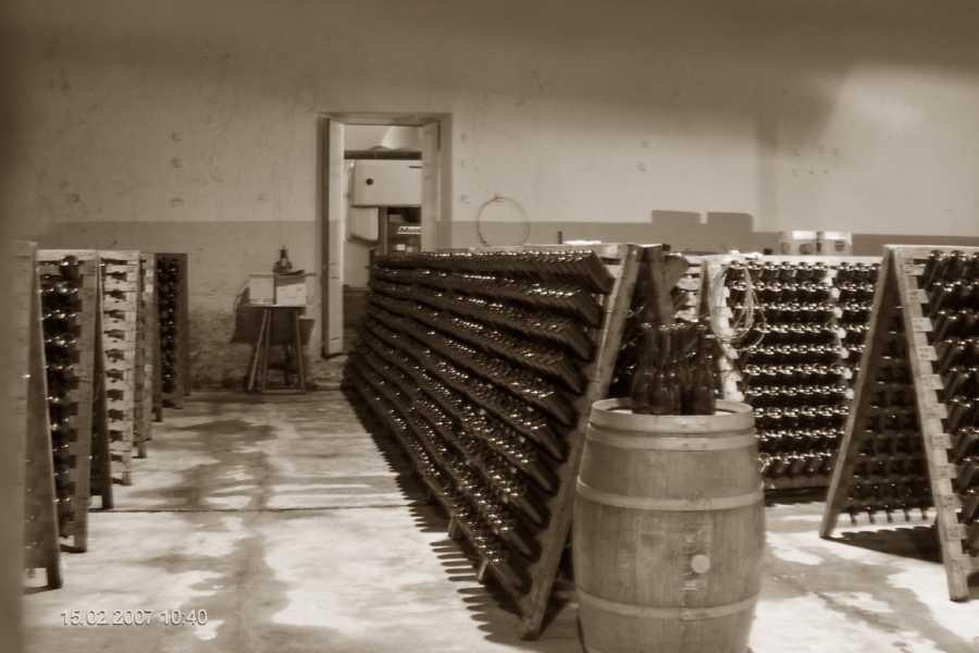 Posada Olivar Wine Tour Luján de Cuyo