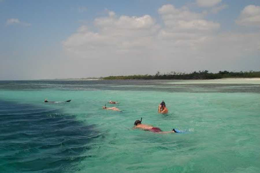 Eleuthera Adventure Tours Ltd. Blue Hole Paddle Board and Kayak Tour