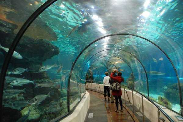 // Aquarium from Belek