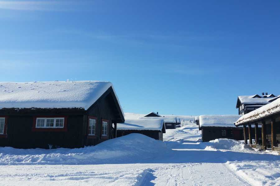 Velkommen til Vaset Gomobu Mountain Lodge
