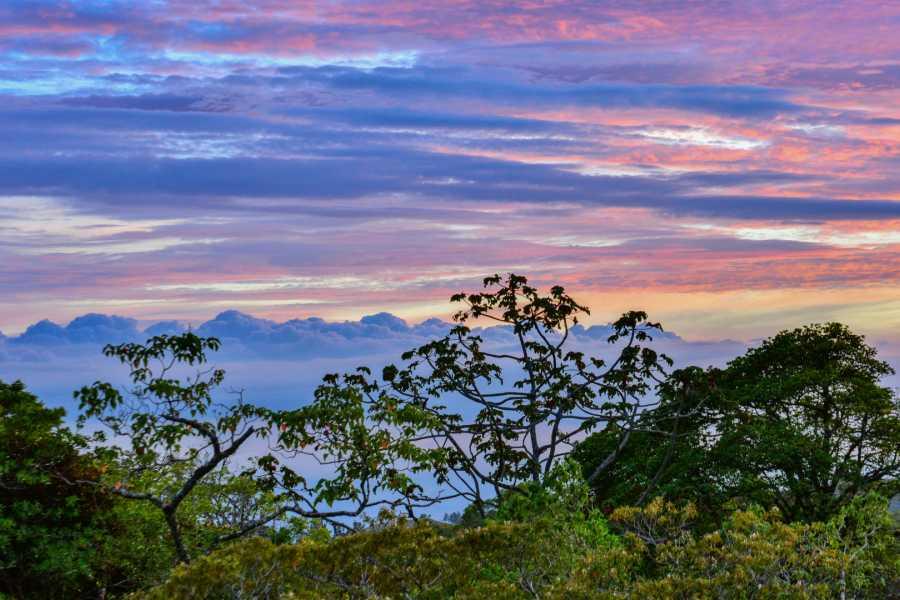 "Tour Guanacaste Monteverde ""Secret"" Hot Spring Trip"