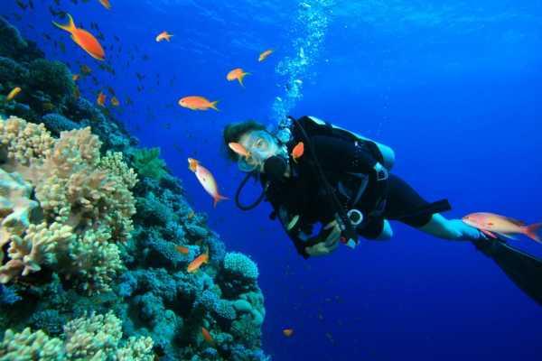 // Scuba Diving Lara