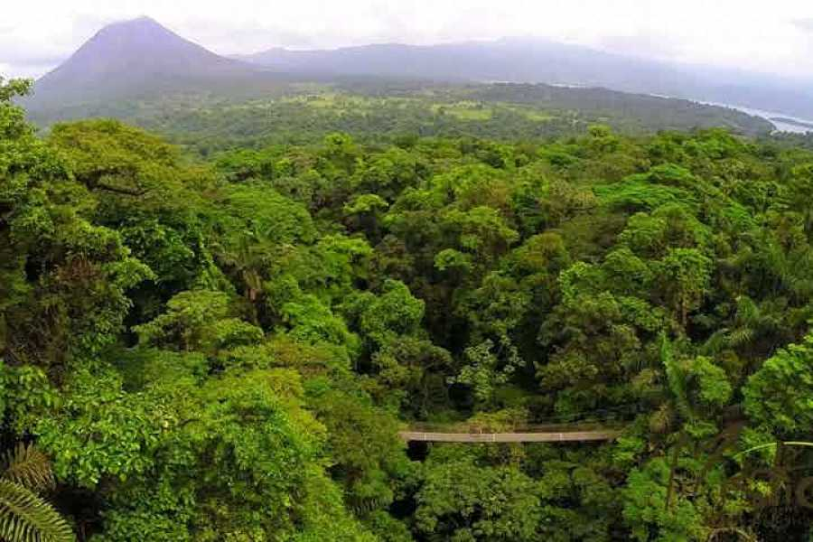 Tour Guanacaste Arenal Zip-Lines & Hanging Bridges