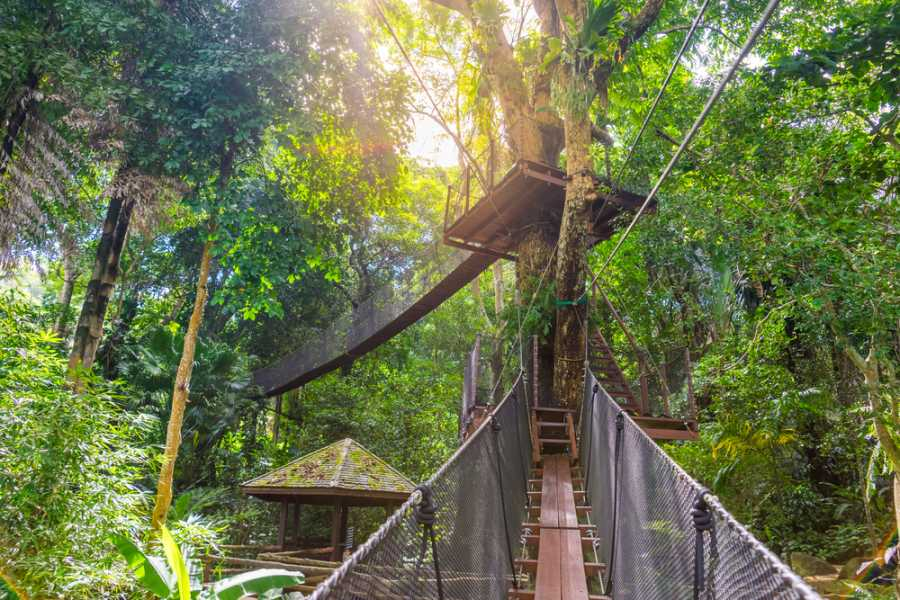Tour Guanacaste Arenal Hanging Bridges and Zorbing Combo