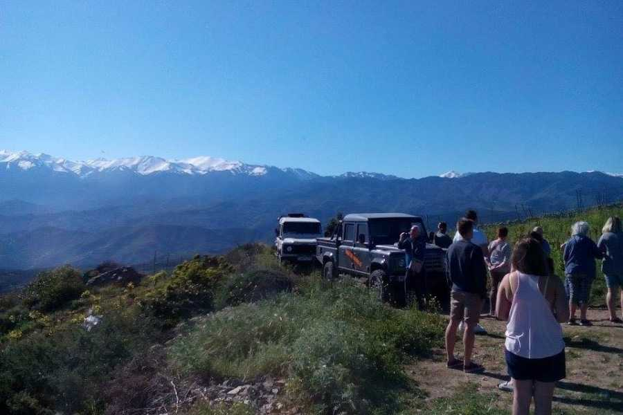 Destination Platanias Jeep safari tur 2 - vin & oliv upplevelsen - 80 EUR