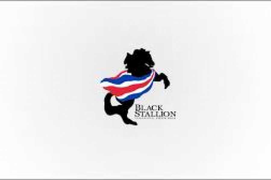 Black stallion ranch Black Stallion Canopy/Zip Line Tour