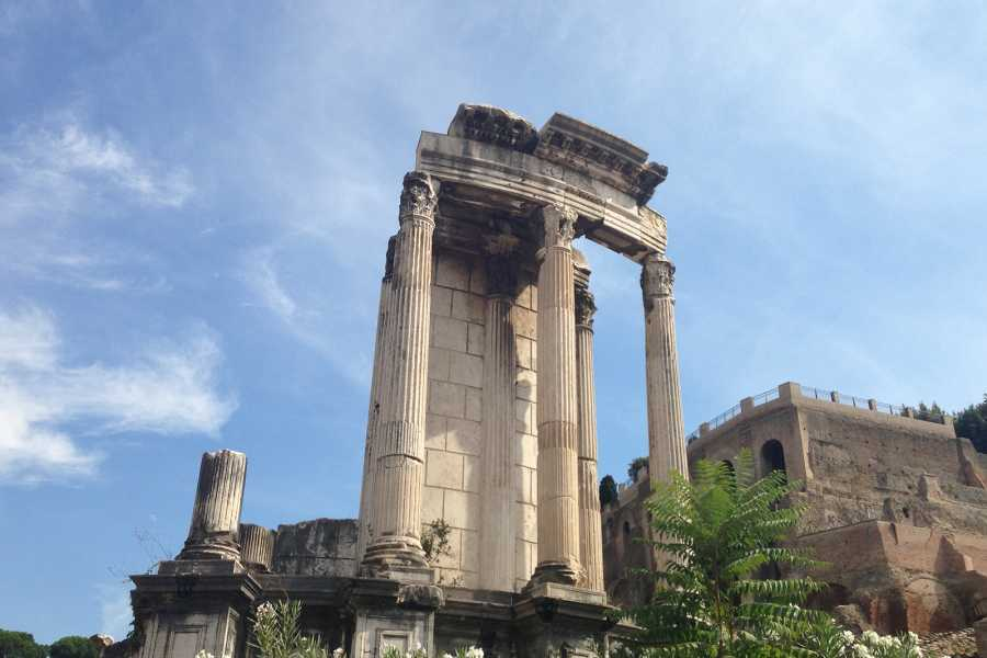 Real Rome Tours VIP Colosseum Underground & Ancient Rome Small Group Tour