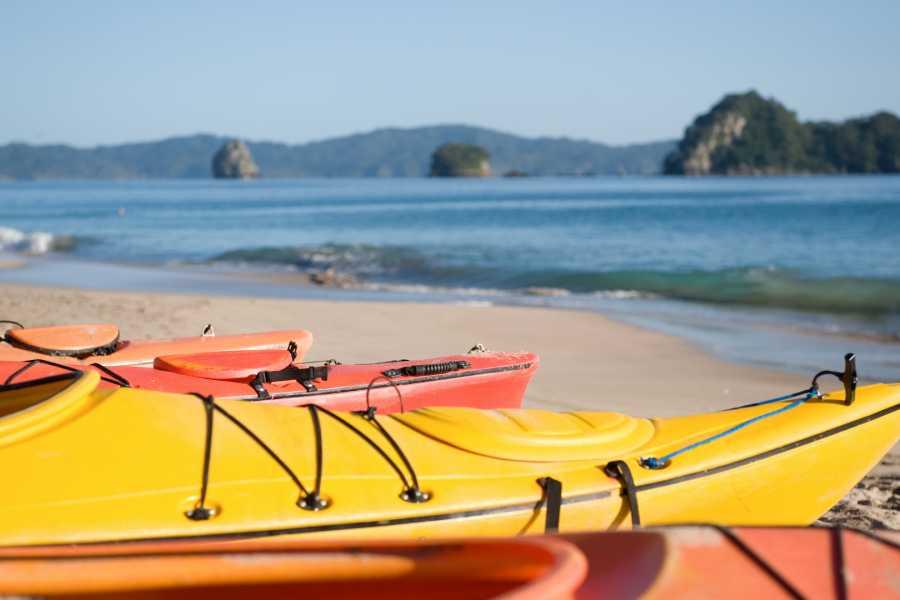 Tour Guanacaste Kayak, Paddle Board, Snorkel Beach Combo