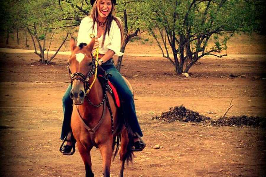 Black stallion ranch Sunset Horseback Tour