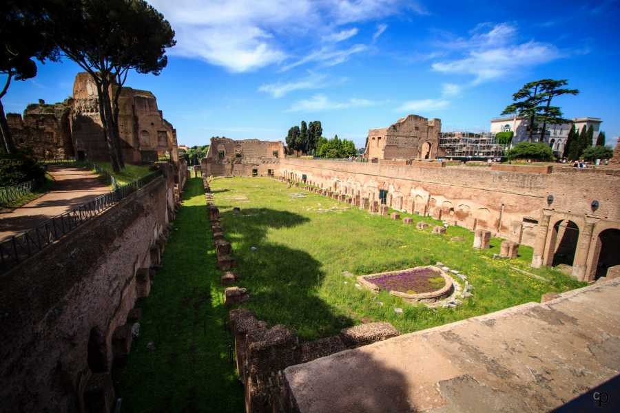 Real Rome Tours Ancient Rome and Colosseum Private Tour
